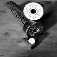 CALIBRE GUNS